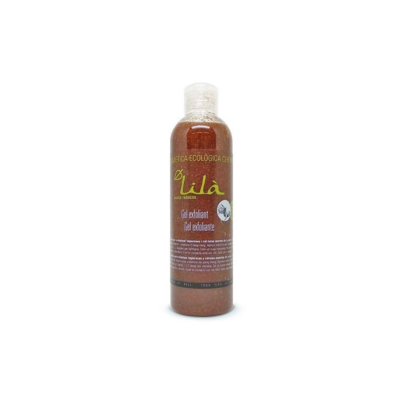 Sopa de setas con miso