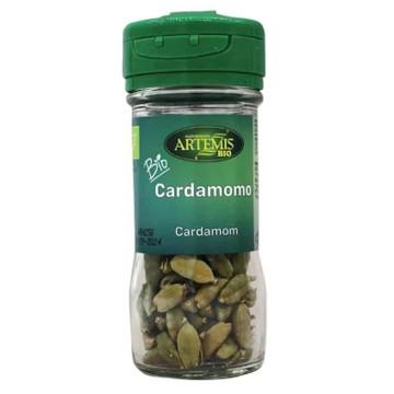 Bastoncitos de algodón ecológicos Bocoton