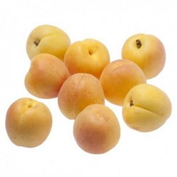 Solofruta pera ecológico Espiga Biológica