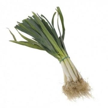Zanahoria ecológica