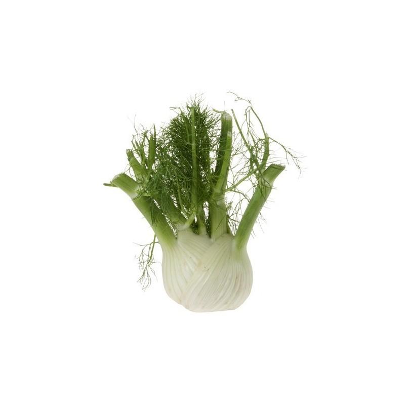 Verduras para el caldo ecológicas