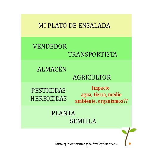 Dime que consumes ecológico