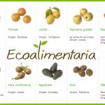 Fruta y verdura ecológica Barcelona