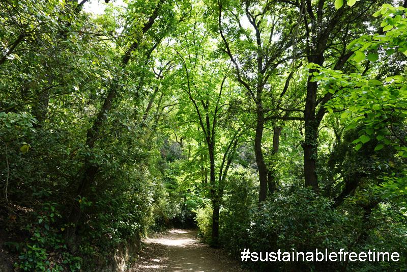 Bosque de Collserola, al lado de la ciudad de Barcelona