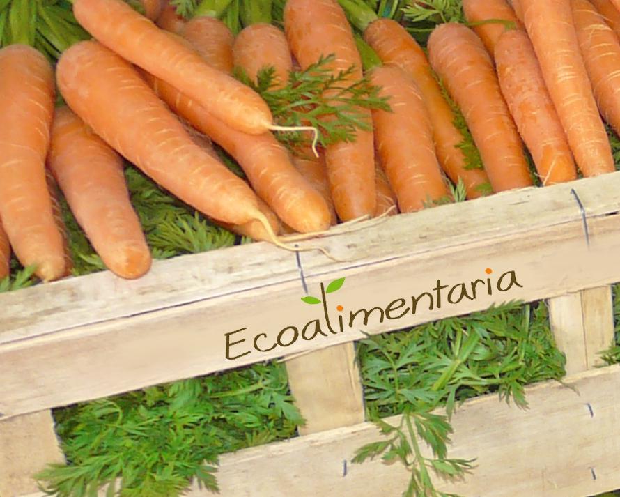 Alimentación ecológica, sostenible, de proximidad